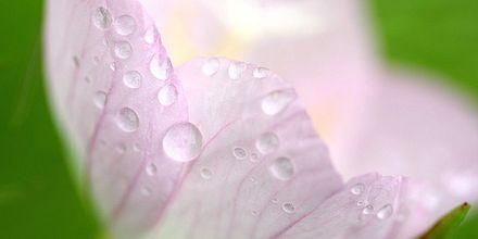 片岡サチの画像 p1_17