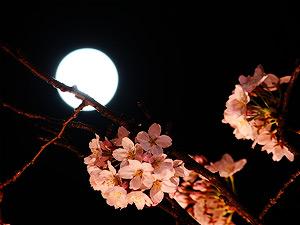 05-lune