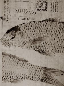 161211-03